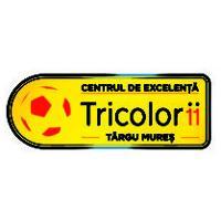 centru-de-excelenta-targu-mures-logo-vector-01-300x212