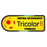 centru-de-excelenta-timisoara-logo-vector-01-300x212
